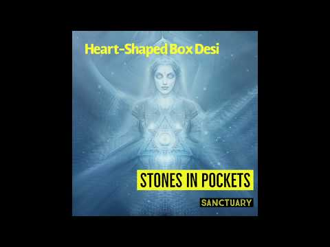 Heart-Shaped Box Desi | Stones in Pockets Music Video | Post Grunge Nirvana Cover
