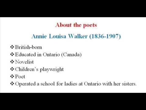 Annie louisa walker womens rights