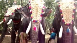 Kiran Narayanankutty, Mangalamkunnu Karnan, Pampady Rajan - Kareparambil Thalapokkamalsaram