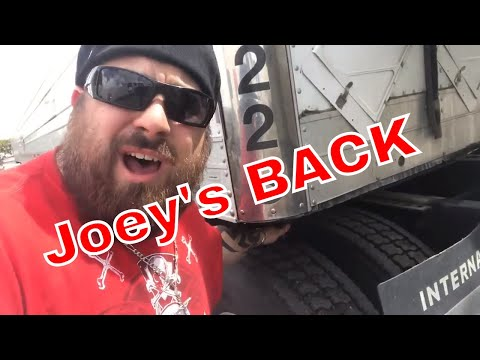 The Return Of Joey