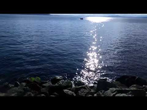 Fishing, Elliot Bay, Puget Sound, Seattle,WA 011