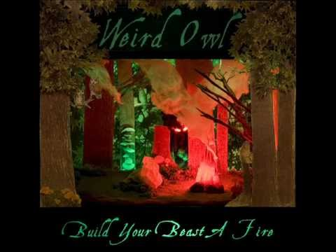 Weird Owl - Mirrors in the mud