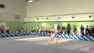 художественная гимнастика показательные выступления 2015 г.Балашиха