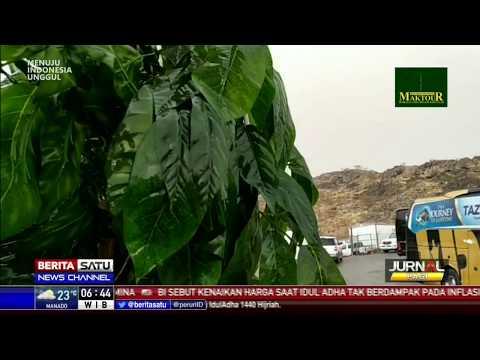 Padang Arafah Diguyur Hujan Disertai Angin