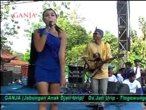 SBY (KOTA BATIK) LAGUNYA SLANK - BY RAHMA RYU STAR