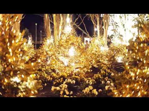 Christmas Town At Busch Gardens Williamsburg VA