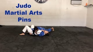 Judo Martial Arts Pins Port Saint Lucie | Brazilian Vale Tudo