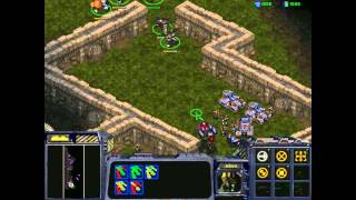 Starcraft 1: Insurrection - Terran 09 - The Council Steadfast
