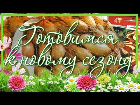 Лук севок и посадочный чеснок с доставкой по Украине