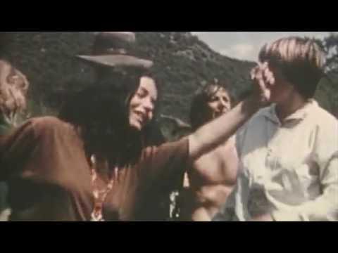 hippie video LCF EXPERIMENT 2