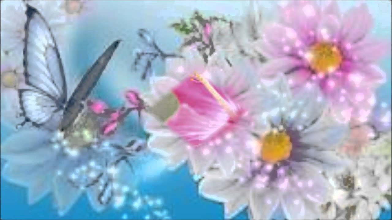 Flowers Slide Show No Sound Youtube