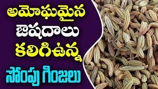 అమోఘమైన ఔషధాలు  కలిగి ఉన్న సోంపు గింజలు ||sompu ginjala upayogalu||fennel seeds for weight loss