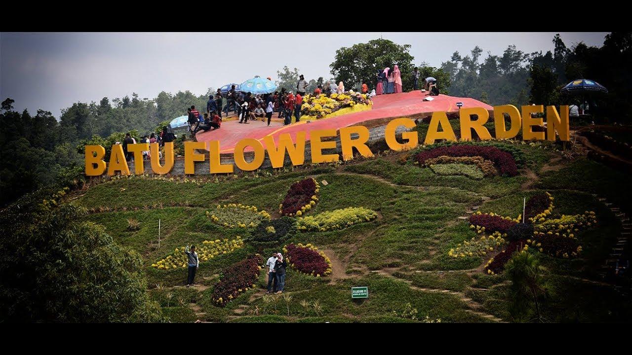 Batu Flower Garden I Taman Bunga Terbesar I Kota Wisata Batu Malang Jawa Timur