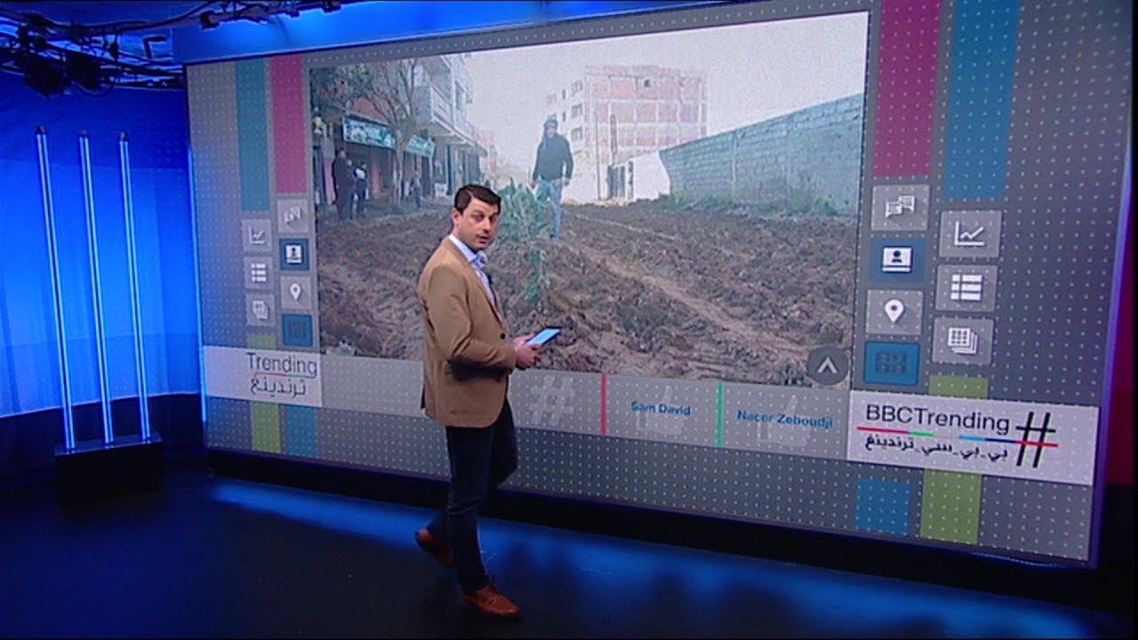 بي_بي_سي_ترندينغ:  جزائريون يحرثون الشوارع ويزرعون بطاطا بعد فشل الحكومة في رصفها