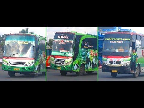 3 Bus Restu Di Terminal Arjosari : N 7757 UG, N 7011 UH, Dan N 7494 UG