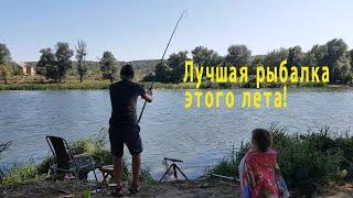 Лучшая фидерная рыбалка этого лета на Северском Донце Рыбалка с семьей