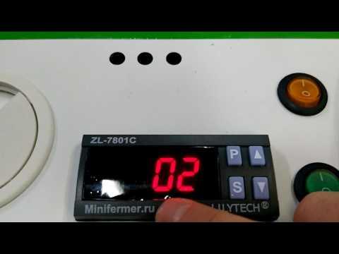 видео: Настройка инкубатора Эггер