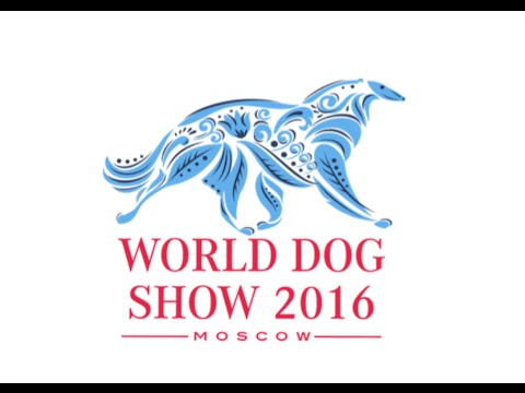 World Dog Show 2016 - Official video