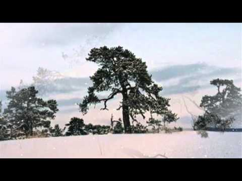 Sibelius :  Two Songs of Winter : Arioso & Since then I've questioned no further - Häggander