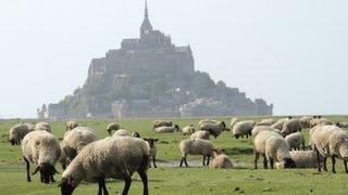 モン・サン・ミッシェルと羊の放牧 2013年5月: 10日間のフランス旅...