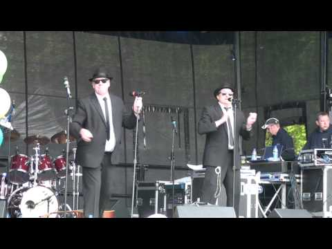 The UK Chicago Blues - A Tribute to The Blues Brothers