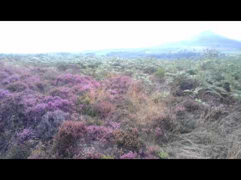 A Walk around Sugarloaf Mountain, Abergavenny,