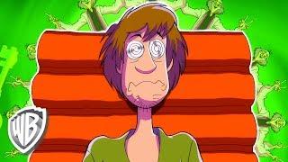 Scooby-Doo! in italiano | Shaggy viene ipnotizzato | WB Kids
