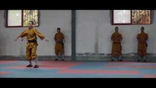 shaolin kung fu kids