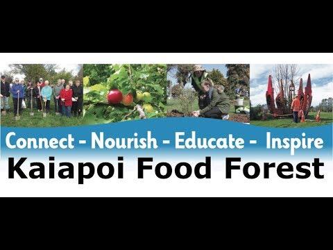 Kaiapoi Food Forest Youtube