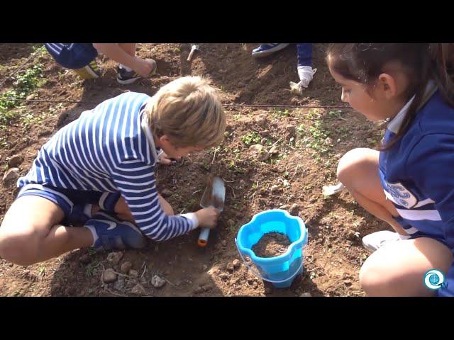Proyecto Prehistoria y Arqueología 3º Primaria - SancaTV