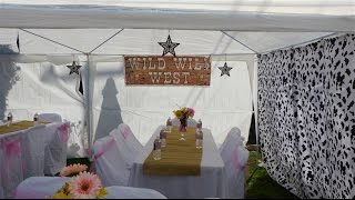 cowgirl pink and brown western themed party