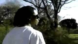 leprechaun remix