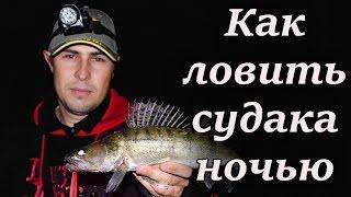 видео Ночная ловля судака