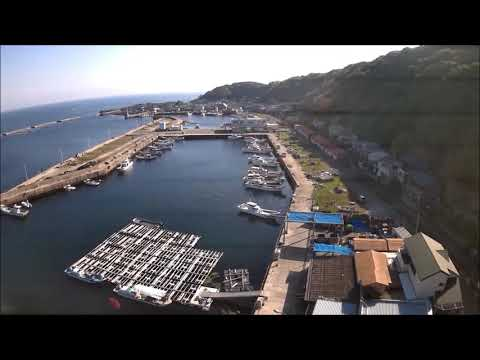 The Cats Island - Ainoshima Japan 猫の島