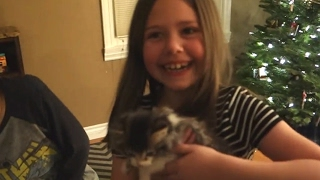 Baby girl with Kitten surprise for Christmas - Best Gifts Ever in the Holiday Compilation