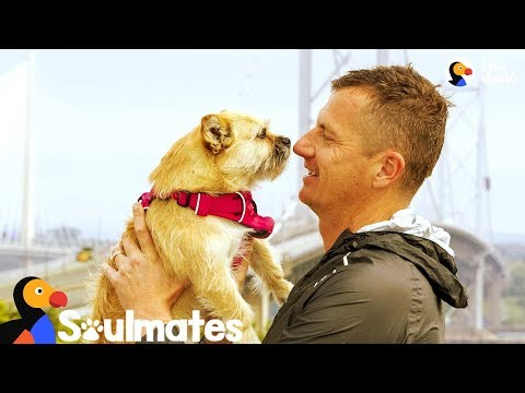 Guy Adopts Stray Dog Who Followed Him On Race | The Dodo Soulmates