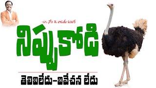 తెలివిలేని నిప్పుకోడి - spiritual meaning of ostrich - Dr. Noah