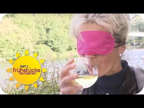 Rot- Vs Weißwein: Erschmeckt Man Mit Verbundenen Augen Den Unterschied? | SAT.1 Frühstücksfernsehen
