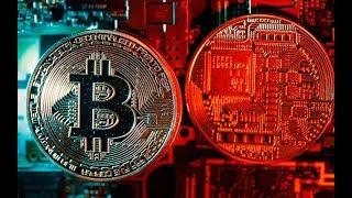 Primedice, как заработать Bitcoin, легкий способ зароботка!!! Bitcoin на автомате!