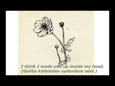 Sylvia Plath - Mad Girl's Love Song (Türkçe Çeviri)