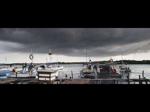 Ураган: Одиссея ветра трейлер 2016