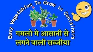 Easy Vegetables To Grow in Containers[HINDI]