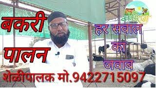Salman Bhai goat 🐐 Farming Success Story सलमान भाई शेळीपालन यशोगाथा