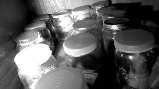 Увидел-Показал #186 Бабушкины соленья или Госпиталь овощей