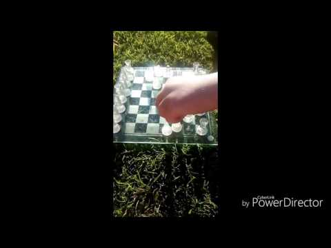 The ultimate chess games