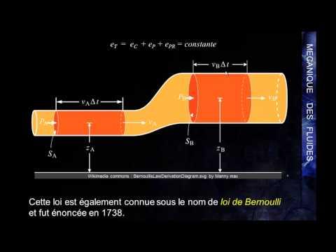 MK Flu 3 - 2 - La loi de Bernoulli