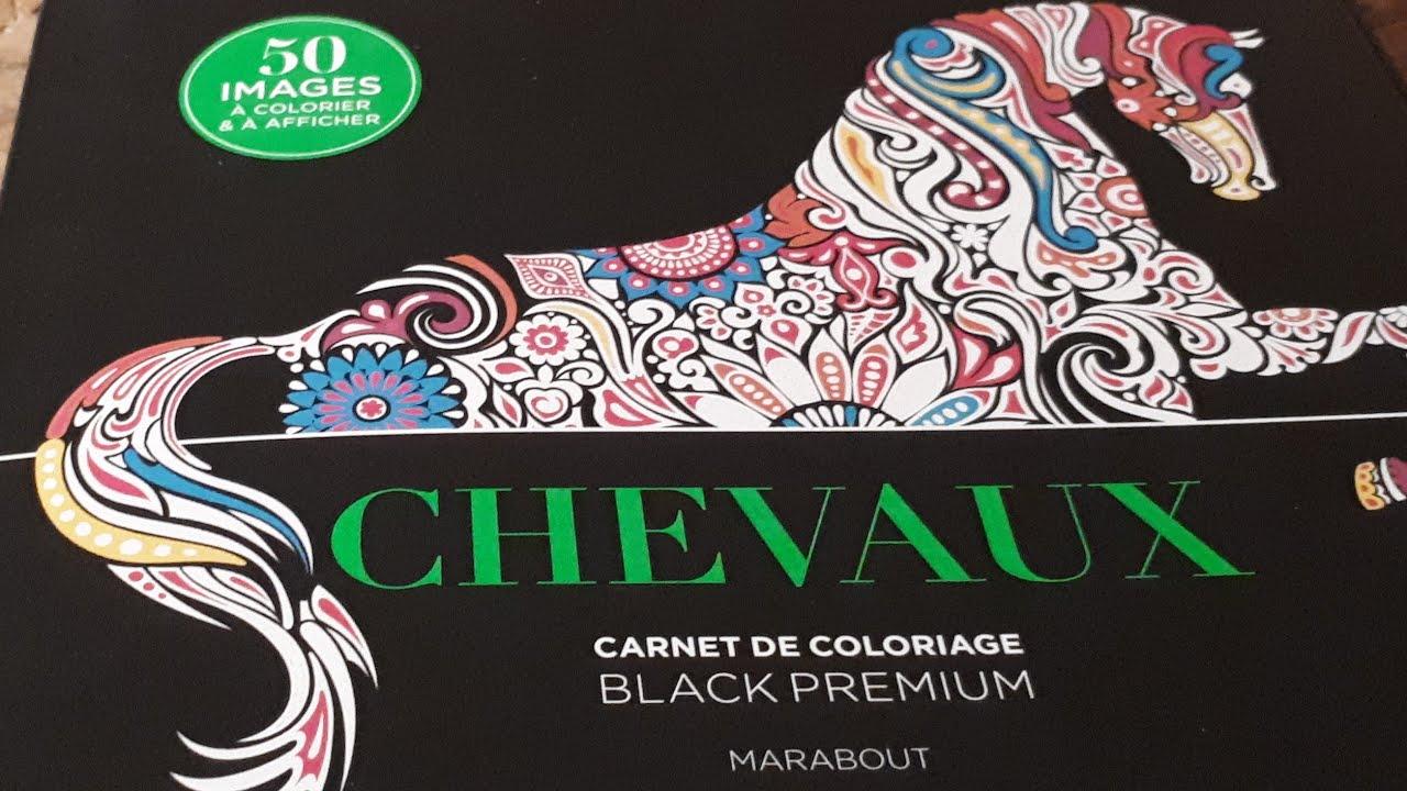 Presentation Chevaux Carnet De Coloriages Marabout Youtube