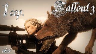Прохождение Fallout 3 Золотое издание 1 серия Снайпер