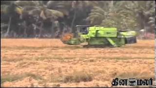 Agriculture News from Kanyakumari - Dinamalar feb 22nd 2014 Tamil video News