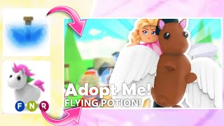 Making my neon pets fly able ||new adopt me flying potion update||